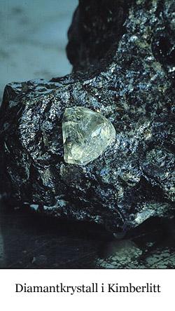 Diamant i kimberlitt
